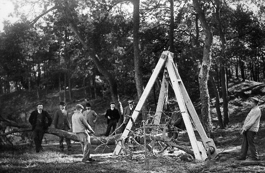 A128042 Défricheurs de forêt: bosontginning te Eksel, uittrekken van een boom met een takel